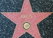 write your name/business name on  a star in Hollywood walk of fame small3
