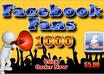 add 1800+ Facebook Fans to your Fan Pages, High Quality Profiled Fan Likes For Your FanPage, within 24 hours