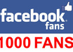 give you more than 1000 facebook fans within 24 hour
