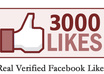 get 3,000 Real Verified facebook likes to any web link you provide me with in 2 days