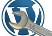 install and customize Wordpress, and i will install some of the best plugins you will need