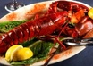 send you over 1000 cooking lobster recipes