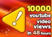 send 10000 guaranteed YOUTUBE views [ I can add until 50000 youtube views]