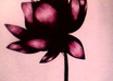 draw a flower small1