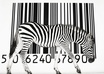 you will get 10x Unique UPC codes for your product so you can sell an item on Amazon, iTunes and other places