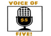 provide a professional voice over small1