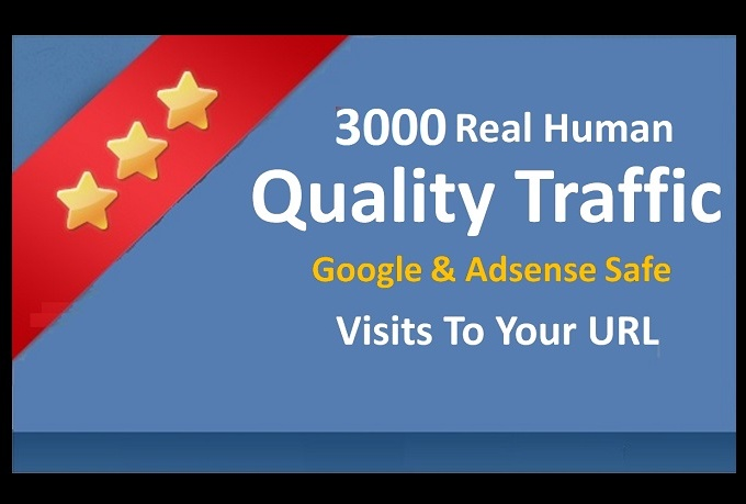 send 3000+ Adsense Safe Unique Traffic to Your URL