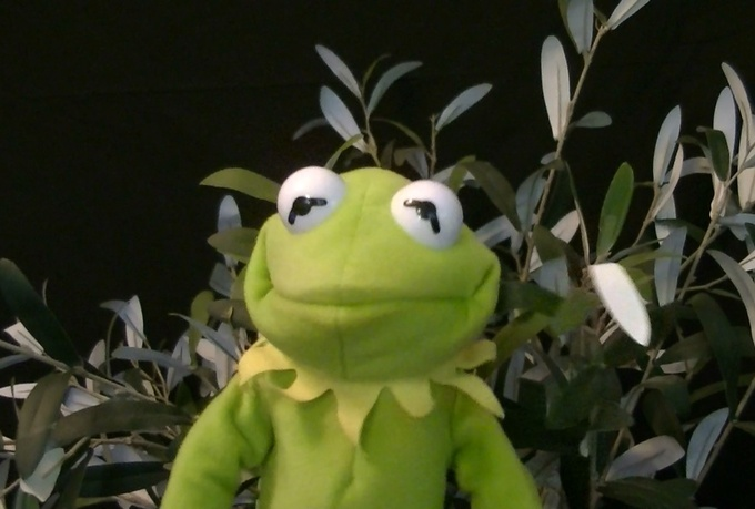 create a happy birthday video featuring KERMIT