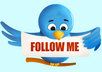 teach you how to get targeted Twitter followers, fast and easy