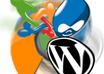 install wordpress/joomla/drupal/phpbb/vbullettin/dolphin in your server within 12hrs