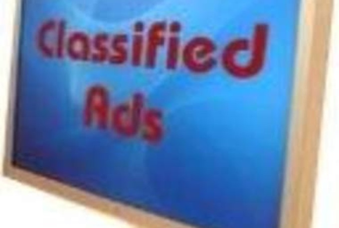 submit your website to 300 free USA classified ad sites