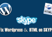 fix any Wordpress and HTML coding on skype in 30 mins
