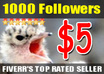 give you 1000 Real Twitter Followers and FREE Tweet to 16000 followers small1