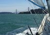 give you basic sailing tips and tricks, and answer general and specific sailing-related questions small1