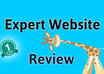 review your website providing valuable, professional feedback to improve it